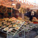 Gestecke, als Herbstdekorationen auf dem Weimarer Zwiebelmarkt | Ausflugsziele Weimar